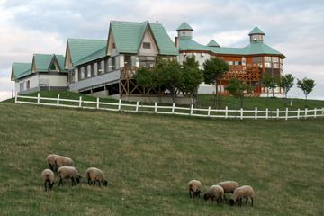 羊と雲の丘の羊飼いの家と羊たち